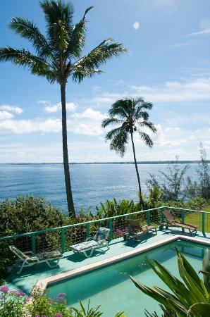 Hale Kai Hawaii Bed & Breakfast : Swimming pool and ocean view
