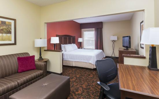 Hampton Inn Lubbock : King Study