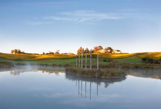 Upper Moutere, New Zealand: The pond at Mahana vineyard
