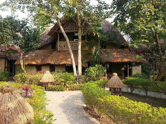 Bengali restaurant -Bhoomi - Picture of Vedic Village Spa