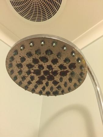City Central Apartments : Rusty showerhead