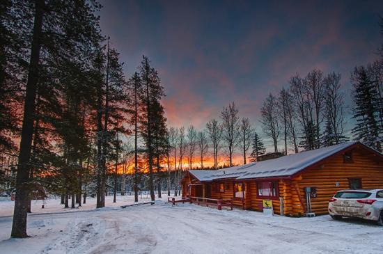 Folk Tree Lodge: 4