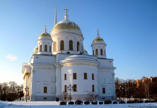 Cathedral of St. Alexander of the Neva: храм на рождество 08.01.15