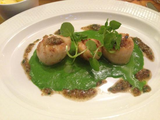 The Joshua Tree : Scallops