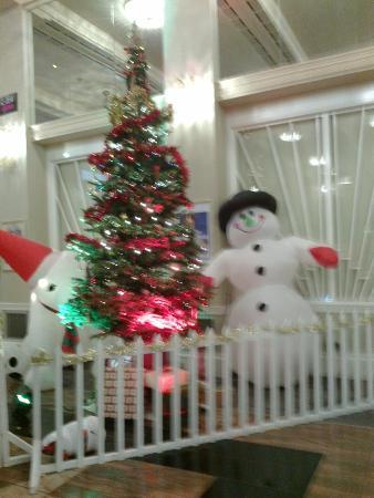 Southport Theatre & Convention Centre: Southport Theatre Foyer