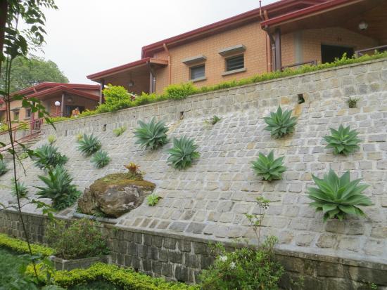 Centrest : Le jardin de l'hôtel