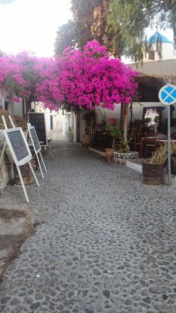 Villas and Mansions of Santorini: The lovely restaurant in Megalochori