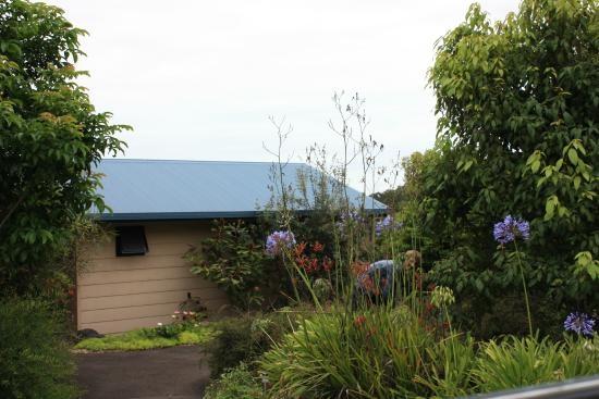 Blue Summit Cottages: Cockatiel cottage