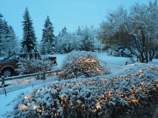 Range Road 15 B&B: Winter Wonderland