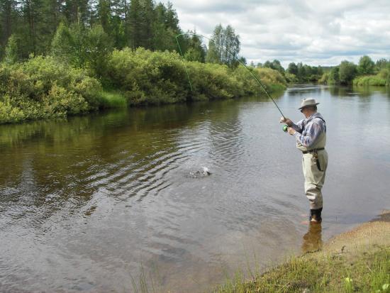 Gentleman fly fishing - Picture of Yllaksen Yopuu, Yllas Log ...