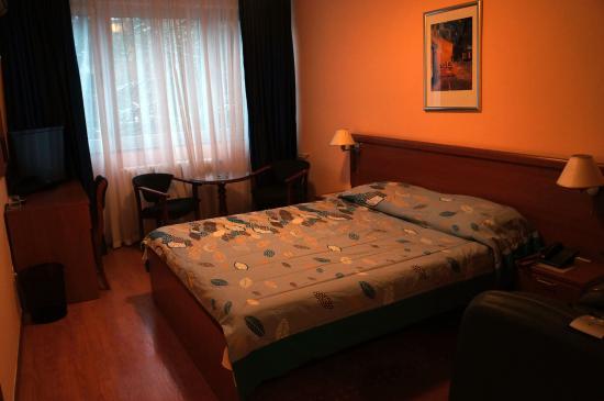 Hotel Rex: Двухместный номер с 1 большой кроватью