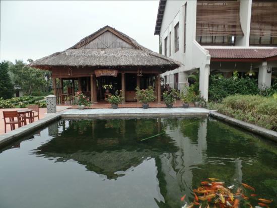 Koi ponds and cafe foto di palm garden resort hoi an for Koi pond traduzione