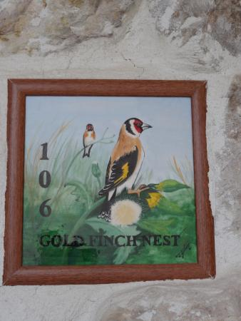 Tafoni Houses: Gold Finch Nest (room)