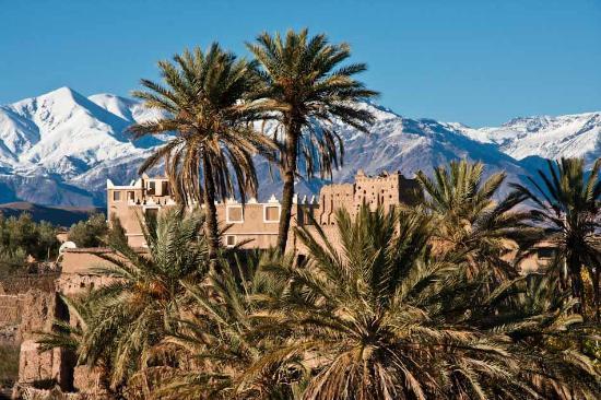 Skoura Morocco  city photo : ... Picture of Wheels Across Morocco Day Tours, Essaouira TripAdvisor