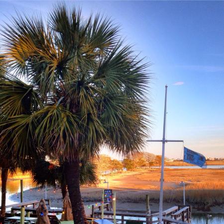 Captain Dave's Dockside Restaurant: Great dinner view