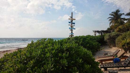 Playa Esperanza : playa