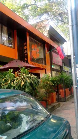 Tiger Hostel: Entrada del Hostel