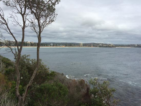 Manly Paradise Motel & Apartments: Manly Beach