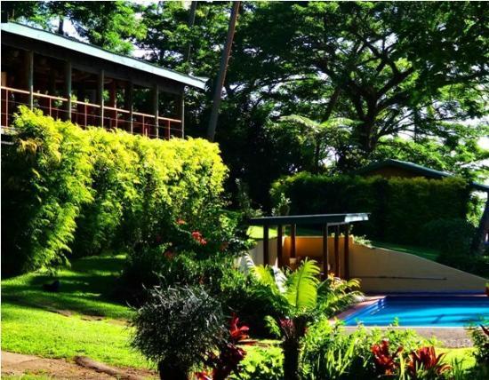 Nakia Resort & Dive: Restaurant Overlooks Pool