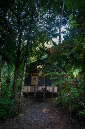 Danta Corcovado Lodge: Our lodge