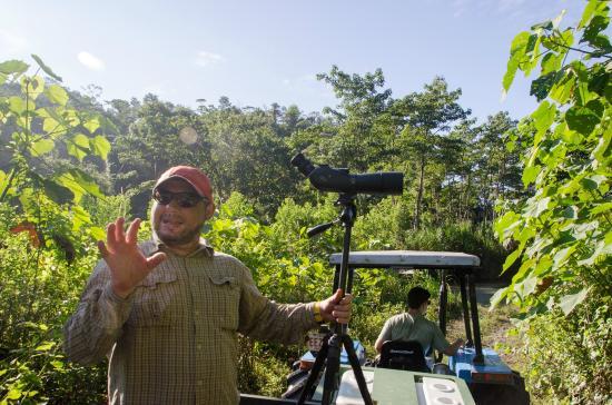 Danta Corcovado Lodge: Jungle tour led by a professional biologist