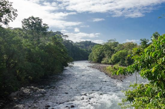 Tirimbina Biological Reserve : The Sarapiquí river