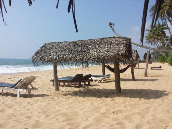 Ganesh Garden Beach Cabanas: Hamac et transat