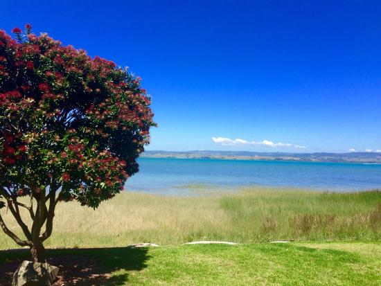 Kawhia Beachside S-Cape Holiday Park: The view from the caravan