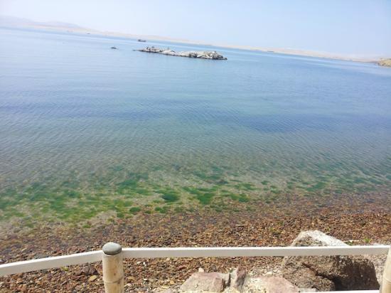 Inti-Mar-Paracas: Vistas desde la habitacion