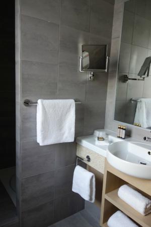 Hotel Le Pre Carre : Sdb