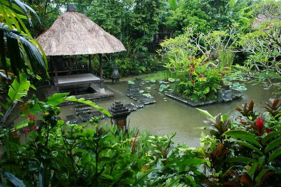 lush duck pond view from restaurant picture of ananda cottages rh tripadvisor co nz ananda cottages ubud map ananda cottages ubud booking