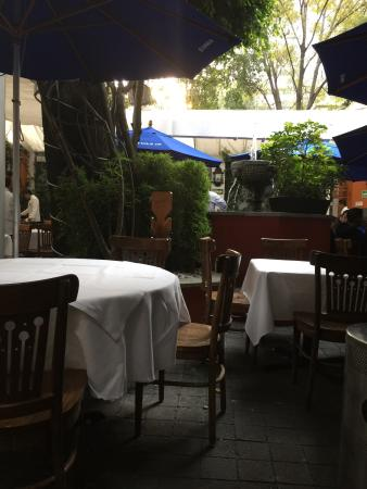Terraza Picture Of Casa Bell Zona Rosa Mexico City
