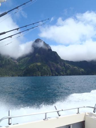 Crackerjack Sportfishing Charters : Beautiful sights!