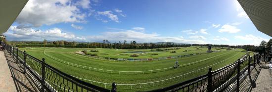 Gowran Park Racecourse: panoramic view from the grandstand