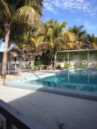 Shipwreck Motel : Heated pool