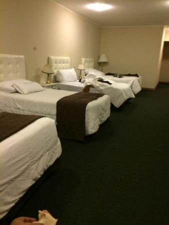 Hotel Stefano's: Ambiente amplo e limpo, bem arejado.