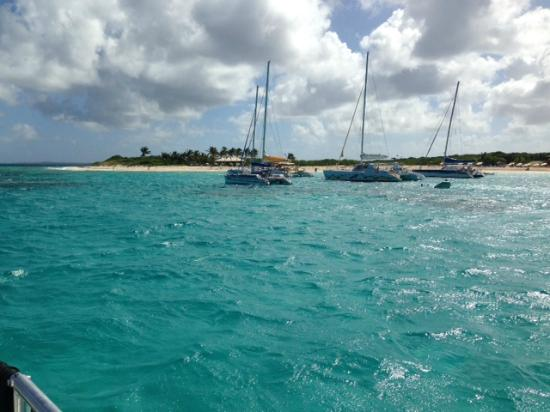 Simpson Bay, St. Maarten/St. Martin: Prickly Pear