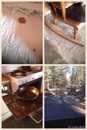 "Big Bear Cool Cabins: ""Surprises"" in cabin. Blood found underneath clean sheet, broken furniture, oven ""goo"", and brok"