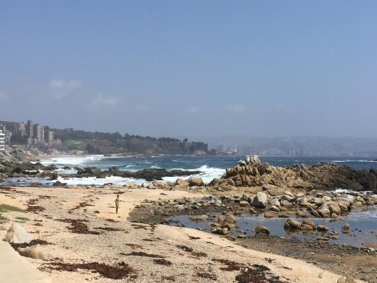 Playa Luna: Vina del mar 2015