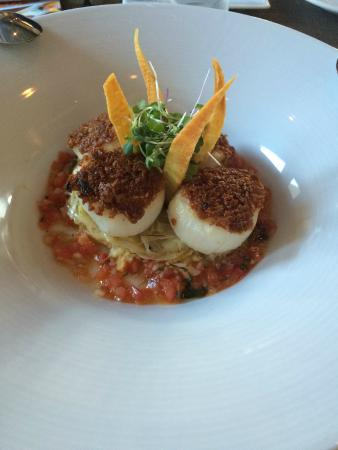 Savor Healdsburg Food Tours: Yummy scallops at Cafe Lucia