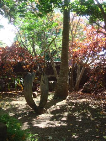 Aukara Lodge, El Taller de Bene Tuki: Jardins bem cuidados. O marido da Ana é escultor