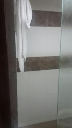 Hotel De' Grand Orchard : sekat kaca untuk shower area pintu masuknya kecil