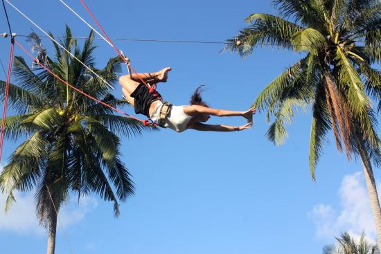 Flying Trapeze Adventures