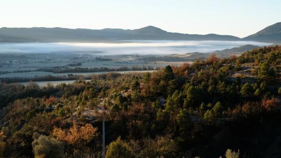 O Chardinet d'a Formiga: Morning fog