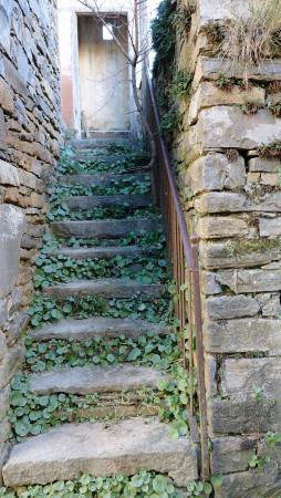O Chardinet d'a Formiga: Stone stairs to abandoned schoolhouse.
