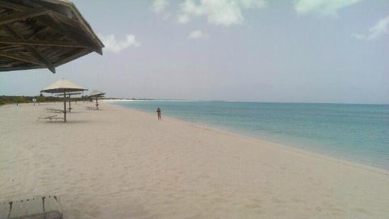 Codrington, Barbuda: Amazing low bay