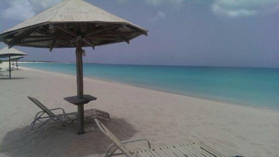 Codrington, Barbuda: Low bay. One of the best beaches in the world