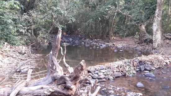 Netravali, الهند: Streams on way