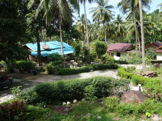 Janinas Resort : Bungalows view 1