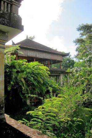 Villa Wastra: Home from a beautiful jungle walk